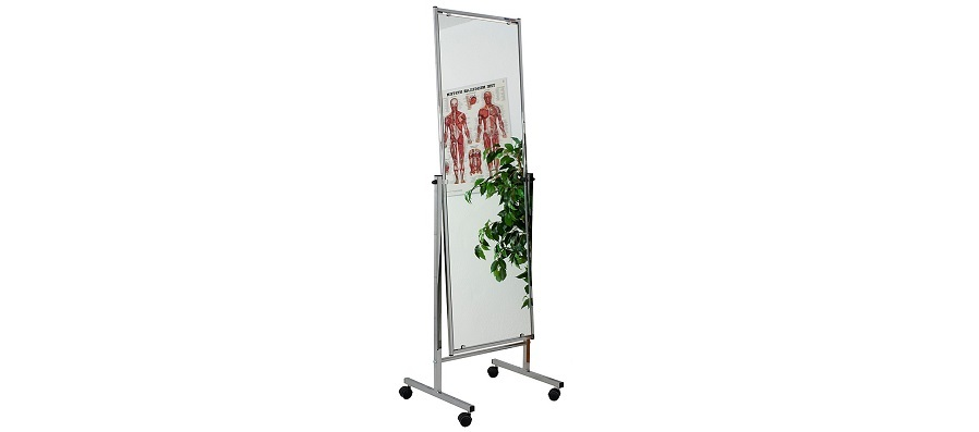 Physiotherapy Mirror